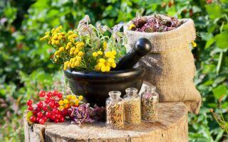 Лечение чесотки в домашних условиях народными методами