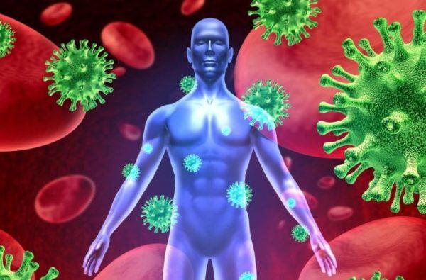Высокая восприимчивость к вирусу