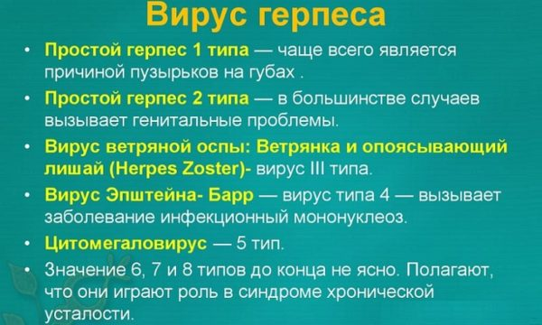 Типы герпеса