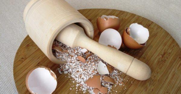 Скорлупа от яиц для лечения папиллом