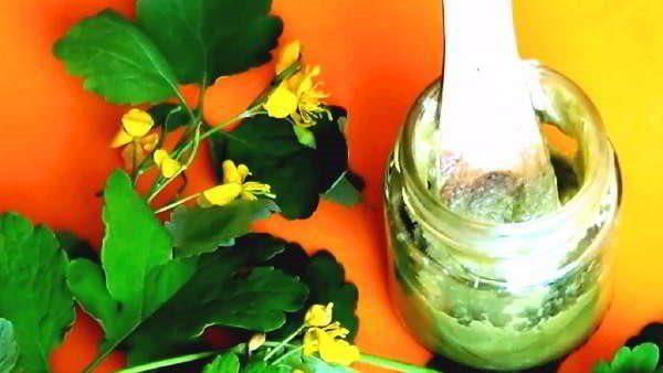 Сок чистотела с вазелином