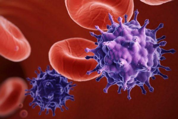 Вирус герпеса в крови