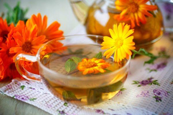 Настой цветков календулы для промывания уха