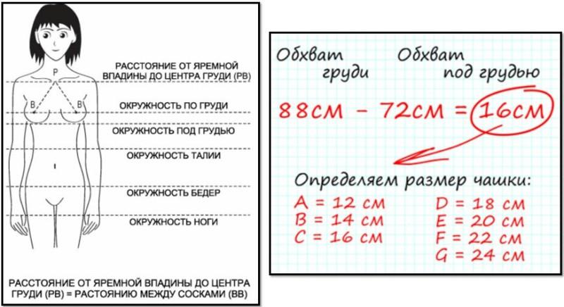 Правила выбора размера бюстгальтера