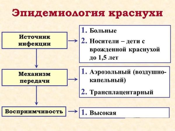 Эпидемиология краснухи
