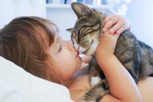 Заражение трихофитией от кошки