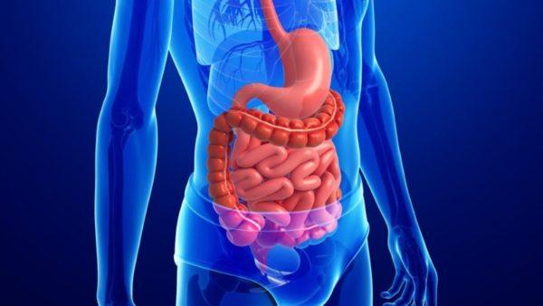 Нарушение работы органов желудочно-кишечного тракта